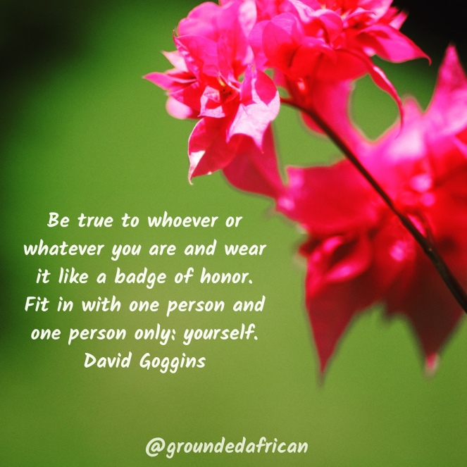 Pink flower with green background. Quote by David Goggins