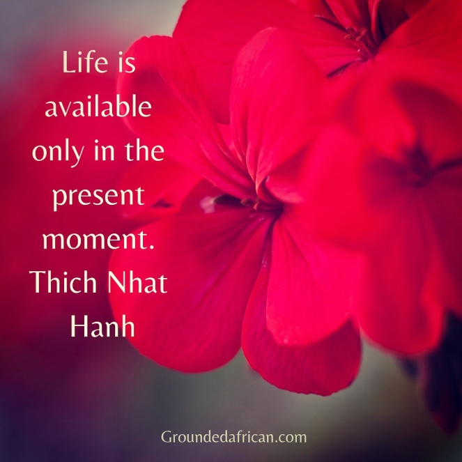 Red flower. Quote by Thich Nhat Hanh
