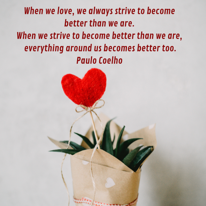 Succulent gift wrapped in brown paper with heart on a stick. Quote by Paulo Coelho