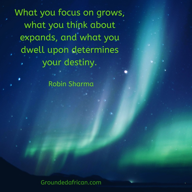The northern lights. Quote by Robin Sharma